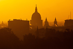 St Paul's Cathedral is silhouetted against the diffuse early morning sunlight as day breaks over London's skyline, seen from Primrose Hill, to the north of the city. London, November 13 2018.