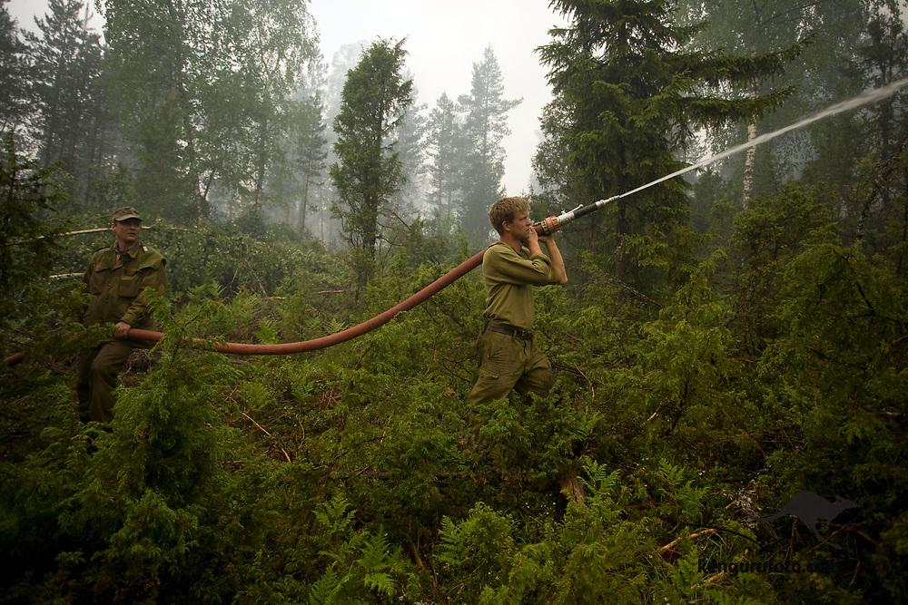 FROLAND, AUST-AGDER, 20080613:<br /> Militære mannskaper  prøver å slukke skogbrannen ved Ytre Lauvrak i Froland fredag. Mann med slange <br /> Foto: Tor Erik Schrøder / SCANPIX