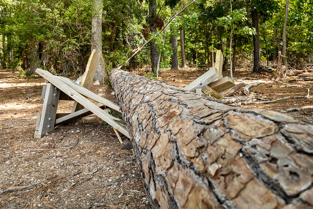 A fallen tree and crushed bench along a trail at Dreher Island State Park in Prosperity, South Carolina on Sunday, August 2, 2020. Copyright 2020 Jason Barnette