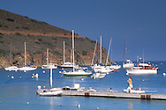 Boats tied up at anchor, Two Harbors, Catalina Island, California Boats anchored in calm blue water of coastal cove below rolling hills at Two Harbors, Catalina Island, California Boats anchored in calm blue water of coastal cove below rolling hills at Two Harbors, Catalina Island, California