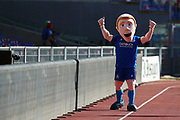 Italy mascot during the Guinness Six Nations 2020, rugby union match between Italy and Scotland, Saturday Feb. 22, 2020,in Rome, Italy.(Federico Proietti/ESPA-Images-Image of Sport)