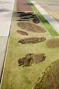 Nederland, Zuid-Holland, Benthuizen, 04-03-2008; Droogmakerij Polder Achterof met de eerste fase van het nieuw aangelegde bos het.Bentwoud; kunstmatig bos in het Groene Hart van de Randstad, nog in ontwikkeling (in beheer bij Staatsbosbeheer), bedoelt voor recreatie van de bewoners van de Randstad.. .luchtfoto (toeslag); aerial photo (additional fee required); .foto Siebe Swart / photo Siebe Swart