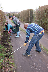 People weeding hedgerow on an allotment.
