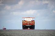 Nederland, Rotterdam, 3-9-2019Aankomst van het grootste containerschip ter wereld, de MV Gulsun van MSC in de haven van Rotterdam. Lengte van 400 meter, breedte van 62 meter, een capaciteit van 23.756 TEU ( 20 voets standaardcontainers ) zeecontainers. Voor de eerste keer in de Rotterdamse haven en wordt welkom geheten. Dit is het eerste schip met 24 containerstapels in de breedte . First arrival of the largest, biggest, containervessel, containership, the MSC Gulsun, in the port of Rotterdam, the Netherlands.Foto: Flip Franssen