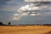 Krajobraz okolic Olecka