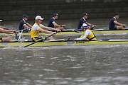 The Isis Goldie Boat Race.<br /> <br /> Isis crew: Josh Bowesman-Jones, Charlie Thurston, Nick Elkington, Hal Frigaard, Ben Thomson, Benedict Aldous, Luke Robinson, Leo von Malaisé, Devon Brameier.<br /> Goldie crew: Calum MacRae, Hugo Durward, Tim Nugent, Gerard Kuenning, Rob Harris, Jonty Page, Tom Strudwick, Reggie Mitchell, Charlie Marcus.<br /> <br /> The Boat Race 2019<br /> <br /> To purchase this photo, or to see pricing information for Prints and Downloads, click the blue 'Add to Cart' button at the top-right of the page.