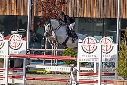 Timmerman Stijn, BEL, Fellaini De Liebri Z<br /> Belgian Championship 6 years old horses<br /> SenTower Park - Opglabbeek 2020<br /> © Hippo Foto - Dirk Caremans<br />  13/09/2020