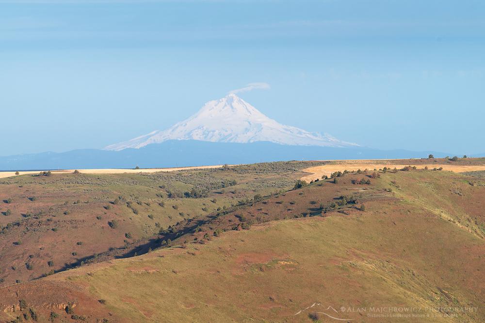 Mount Hood seen from Columbia Plateau near Condon, Oregon