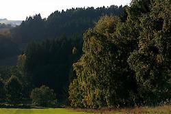 CZECH REPUBLIC VYSOCINA 16OCT11 - Landscape near Trpin, Vysocina, Czech Republic...jre/Photo by Jiri Rezac..© Jiri Rezac 2011