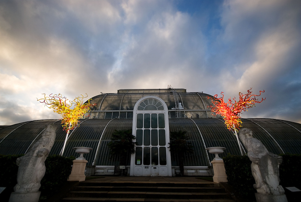 London's Kew Gardens transformed by a series of bold glass sculptures. US artist Dale Chihuly has designed the pieces to respond to Kew's plants, trees and historic glasshouses. Many mirror organic shapes and forms, while others seize the eye with extravagant colour.