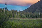 The light turned blue after the sun dropped below the horizon.  This created a soft cast to the vegetation while pink continued to show on the clouds above.  Cascade frogs continued to call vigorously as we passed to darkness.