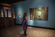 Burke Museum: Wild Nearby Exhibit (Summer 2016)