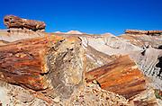Pedestal logs and petrified log sections on Blue Mesa, Petrified Forest National Park, Arizona