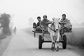 Punjab India 2012