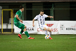 during football match between NŠ Mura and NK Domžale in 23rd Round of Prva liga Telekom Slovenije 2018/19, on March 02, 2019 in Fazanerija, Murska Sobota, Slovenia. Photo by Blaž Weindorfer / Sportida