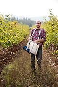 James Kohn of Wandering Aengus Cidery picks apples for making cider.
