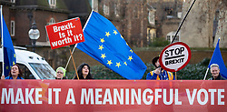 © Licensed to London News Pictures. 11/01/2019. London, UK. Brexit demonstrations in Westminster. MPs are currently debating British Prime Minister Theresa May's EU withdrawal deal, with a vote on the deal due to take place on 15th January. Photo credit : Tom Nicholson/LNP