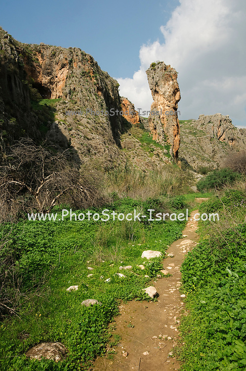 Israel, Galilee, Amud (Pillar) stream nature reserve and park The rock column that gives this river it's name