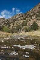 Sycamore Canyon, Coronado National Forest, Arizona