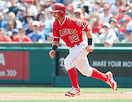Johnny Giavotella runs the bases during the Angels' preseason game against the Chicago Cubs at Angel Stadium Sunday.<br /> <br /> <br /> ///ADDITIONAL INFO:   <br /> <br /> angels.0404.kjs  ---  Photo by KEVIN SULLIVAN / Orange County Register  --  4/3/16<br /> <br /> The Los Angeles Angels take on the Chicago Cubs at Angel Stadium during a preseason game at Angel Stadium Sunday.<br /> <br /> <br />  4/3/16