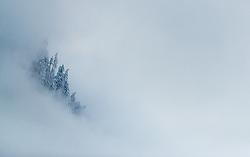 THEMENBILD - angeschneite Bäume im Nebel, aufgenommen am 07. November 2016, Kaprun, Österreich // Snow covered trees in the fog in Kaprun, Austria on 2016/11/07. EXPA Pictures © 2016, PhotoCredit: EXPA/ JFK
