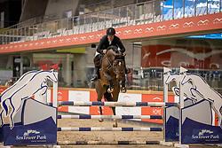 Vander Meerssche Sven, BEL, Calief Topfok<br /> Pavo Hengsten competitie - Oudsbergen 2021<br /> © Hippo Foto - Dirk Caremans<br />  22/02/2021