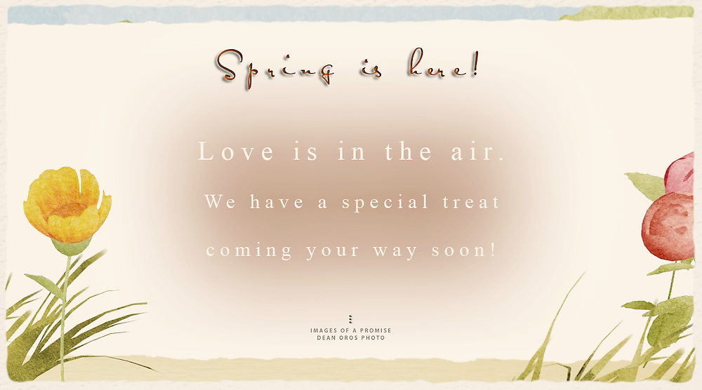Spring is here! Love is in the air. We have a special treat coming your way soon!