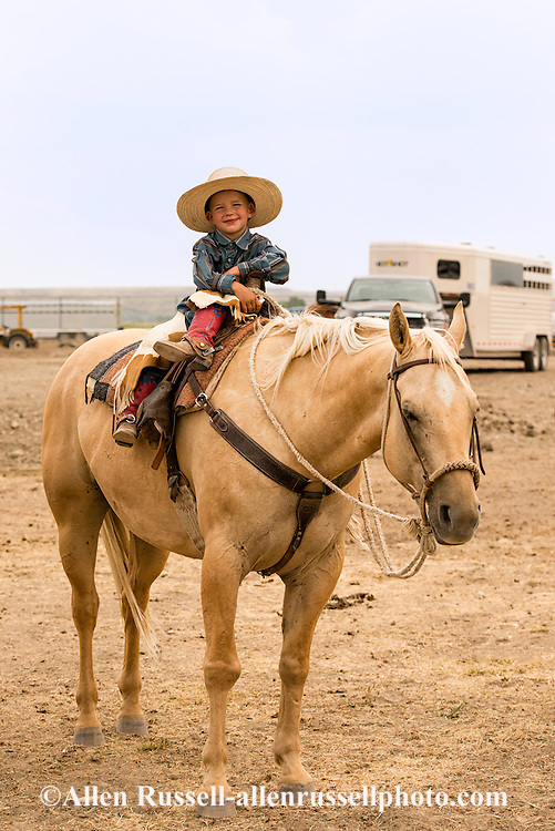 Will James Roundup, Ranch Rodeo, Working Ranch Horse, Hardin, Montana, Ryker Roskelly, MODEL RELEASED, PROPERTY RELEASED rider & horse