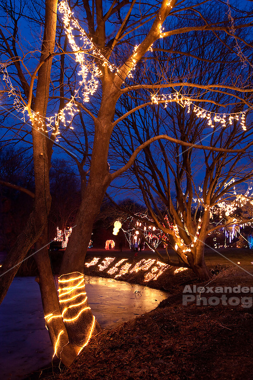 "Ballard Park, Newport, RI. Playfully decorated with lights for the annual winter event, The ""Illuminated Garden"""
