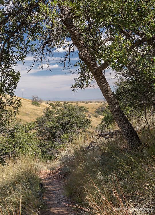 Arizona Trail near Kentucky Camp