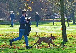 © Licensed to London News Pictures. 10/11/2020.  <br /> Greenwich, UK. A man is running after his escaping dog. Mild autumnal weather today in Greenwich Park, Greenwich, London as people get out of the house from Coronavirus lockdown to exercise. Photo credit:Grant Falvey/LNP