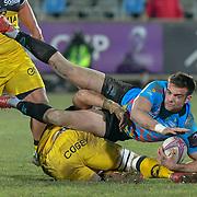 20190119 Rugby, Challenge Cup : Zebre vs La Rochelle