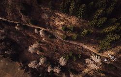 THEMENBILD - eine Seilbahn mit Gondeln in der braunenn Landschaft, aufgenommen am 13. Januar 2019 in Predazzo, Italien // a cable car with gondolas in the brown landscape, Predazzo, Italy on 2019/01/13. EXPA Pictures © 2019, PhotoCredit: EXPA/ JFK