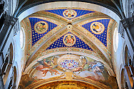 Painted vaulted ceiling of the Cattedrale di San Martino,  Duomo of Lucca, Tunscany, Italy, .<br /> <br /> Visit our ITALY HISTORIC PLACES PHOTO COLLECTION for more   photos of Italy to download or buy as prints https://funkystock.photoshelter.com/gallery-collection/2b-Pictures-Images-of-Italy-Photos-of-Italian-Historic-Landmark-Sites/C0000qxA2zGFjd_k<br /> <br /> <br /> Visit our MEDIEVAL PHOTO COLLECTIONS for more   photos  to download or buy as prints https://funkystock.photoshelter.com/gallery-collection/Medieval-Middle-Ages-Historic-Places-Arcaeological-Sites-Pictures-Images-of/C0000B5ZA54_WD0s .<br /> <br /> If you prefer to buy from our ALAMY PHOTO LIBRARY  Collection visit : https://www.alamy.com/portfolio/paul-williams-funkystock/lucca.html .