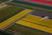 Nederland, Noord-Holland, Gemeente Zijpe, 28-04-2010; Zijpe- en Hazepolder, kop van Noord-Holland. Bloembollenvelden worden gesproeid. Geestgrond vlak achter de duinen van Petten. .Polder, head of North-Holland, bulb fields with mainly tulip along the North Holland Canal..luchtfoto (toeslag), aerial photo (additional fee required).foto/photo Siebe Swart