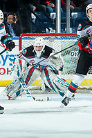 KELOWNA, BC - JANUARY 31: Cole Schwebius #31 of the Kelowna Rockets defends the net against the Spokane Chiefs at Prospera Place on January 31, 2020 in Kelowna, Canada. (Photo by Marissa Baecker/Shoot the Breeze)