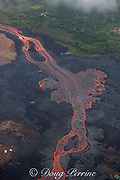Aerial view of incandescent lava river draining from Fissure 8 of Kilauea Volcano east rift zone near the town of Pahoa. The river of lava runs downhill through Kapoho, Puna District, Hawaii Island ( the Big Island ), Hawaiian Islands, U.S.A.