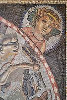 France, Bourgogne-Franche-Comté, Yonne (89), Sens, musée de Sens, musée gallo-romain // France, Burgundy, Yonne, Sens, museum