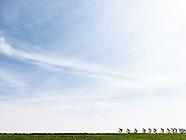 Amstel Gold Race CG