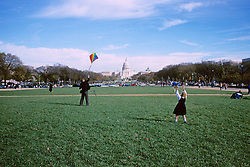 Flying Kite At Capitol Mall
