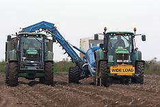OCT 8 2012  Lincolnshire Worst Potato Harvest in Decades