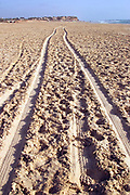 Tyre tracks in a sand dune