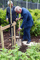 His Royal Highness The Prince of Wales at The Oxford Centre for Islamic Studies Marton Road Oxford planting a tree at the  fopening ceremony 16thmay 2017