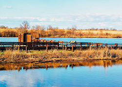 Busch Wildlife offers several locations to bird-watch, especially for waterfowl. A great place fore nature enthusiasts and photographers alike