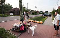 25.07.2015 wies Ryboly woj podlaskie N/z sprzedaz warzyw i owocow przy DK 19 Bialystok - Lublin fot Michal Kosc / AGENCJA WSCHOD