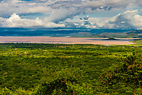 Overview of Lake Chamo, Southern Nations Nationalities and People's Region, Ethiopia. One of the two largest Rift Valley lakes.