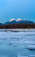 Ice on the Fraser River with Mount Blanshard (Golden Ears) in the background.  Photographed during a rare period of ice on the Fraser River from Tavistock Point in Brae Island Regional Park, Langley, British Columbia, Canada.