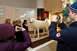 Exhibits and displays at Canada's Northern House