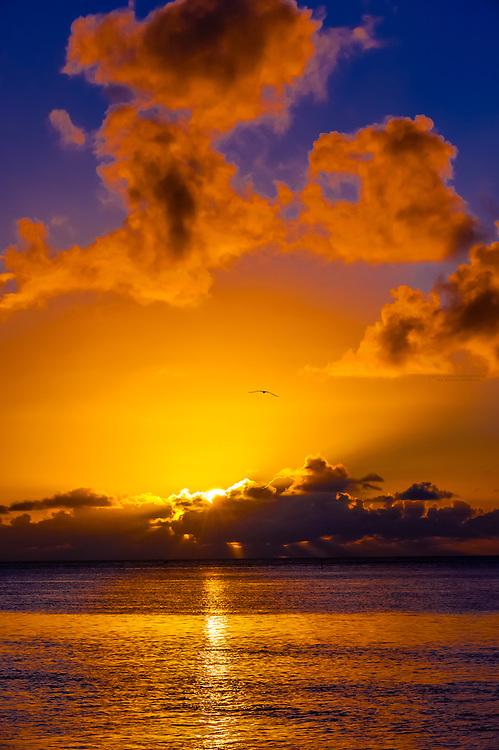 Sunset, Hilton Moorea Lagoon Resort, island of Moorea, French Polynesia.