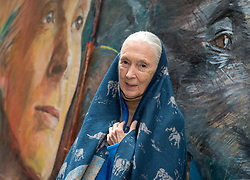 November 10, 2016 - Hong Kong, Hong Kong S.A.R, China - Conservationist Dame Dr Jane Goodall, unveils a wall painting by local artist Adam Lo of her self and animals. .''Walls of Change'' street art in Hong Kong painted ahead of the The √íHope for Wildlife√ì Gala Dinner to raise awareness for the plight of endangered animals the world over..Sai Yin Pun Hong Kong.10th November 2016. Photo by Jayne Russell. (Credit Image: © Jayne Russell via ZUMA Wire)